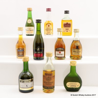 Assorted Minis 10 x 5cl Including Remy Martin VSOP