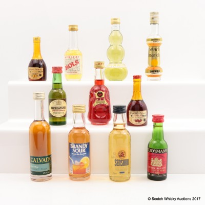 Assorted Minis x 11 Including Apricot Bols Liqueur 5cl